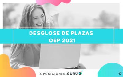 El Gobierno publica el desglose de plazas por oposiciones de la OEP 2021